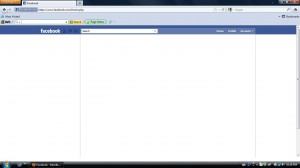 Screenshot of Facebook not loading in Firefox